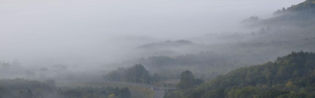赤井川村の雲海
